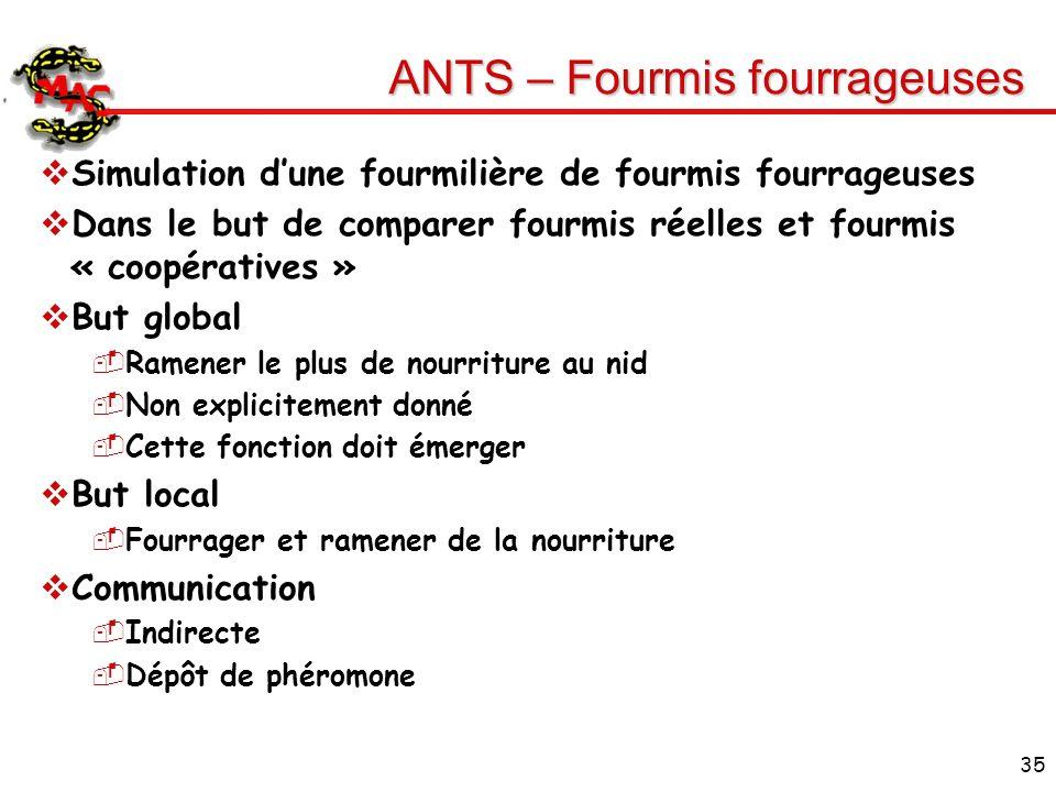 35 ANTS – Fourmis fourrageuses Simulation dune fourmilière de fourmis fourrageuses Dans le but de comparer fourmis réelles et fourmis « coopératives »
