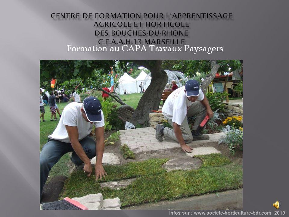Formation au CAPA Travaux Paysagers Infos sur : www.societe-horticulture-bdr.com 2010