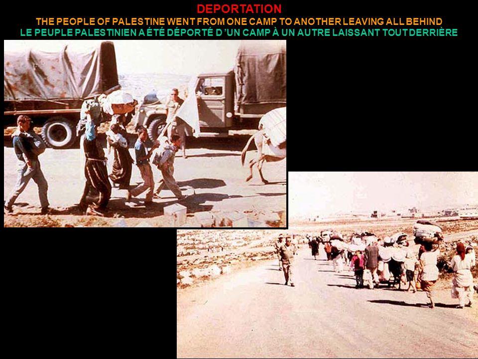 DEPORTATION THE PEOPLE OF PALESTINE WENT FROM ONE CAMP TO ANOTHER LEAVING ALL BEHIND LE PEUPLE PALESTINIEN A ÉTÉ DÉPORTÉ D UN CAMP À UN AUTRE LAISSANT TOUT DERRIÈRE