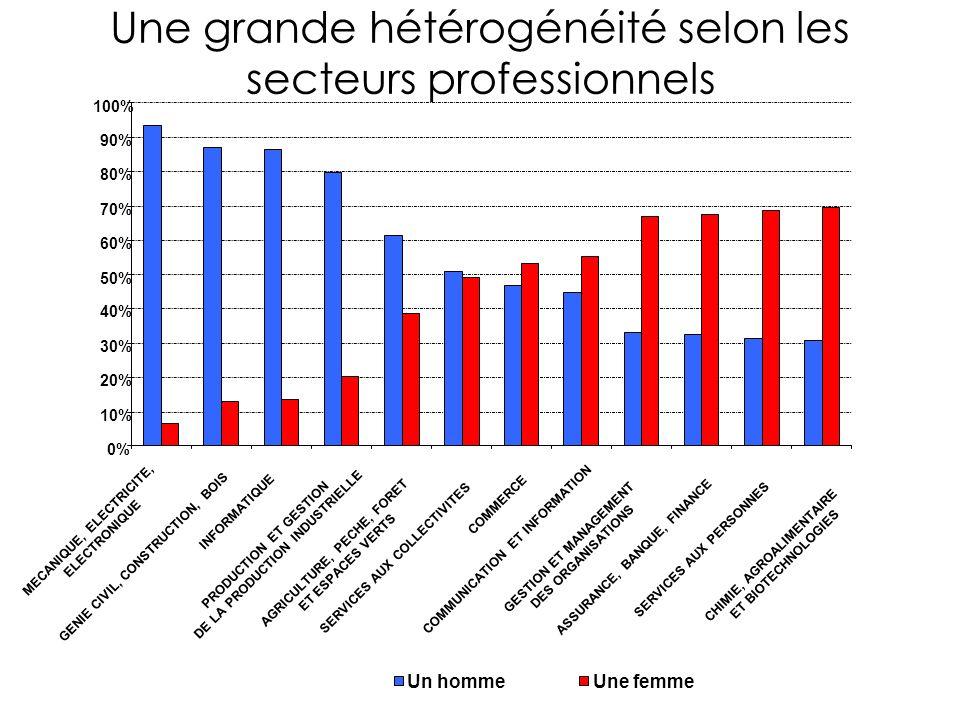 0% 10% 20% 30% 40% 50% 60% 70% 80% 90% 100% Une grande hétérogénéité selon les secteurs professionnels MECANIQUE, ELECTRICITE, ELECTRONIQUE GENIE CIVIL, CONSTRUCTION, BOIS INFORMATIQUE PRODUCTION ET GESTION DE LA PRODUCTION INDUSTRIELLE AGRICULTURE, PECHE, FORET ET ESPACES VERTS SERVICES AUX COLLECTIVITES COMMERCE COMMUNICATION ET INFORMATION GESTION ET MANAGEMENT DES ORGANISATIONS ASSURANCE, BANQUE, FINANCE SERVICES AUX PERSONNES CHIMIE, AGROALIMENTAIRE ET BIOTECHNOLOGIES Un hommeUne femme