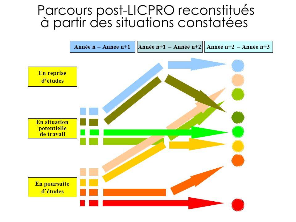 Parcours post-LICPRO reconstitués à partir des situations constatées En situation potentielle de travail En reprise détudes En poursuite détudes Année n–Année n+1 –Année n+2 –Année n+3