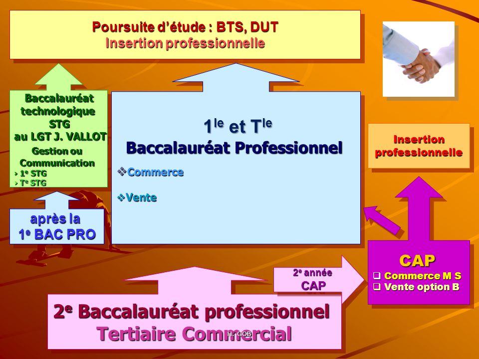 2 e Baccalauréat professionnel Tertiaire Commercial 2 e Baccalauréat professionnel Tertiaire Commercial 1 le et T le 1 le et T le Baccalauréat Profess