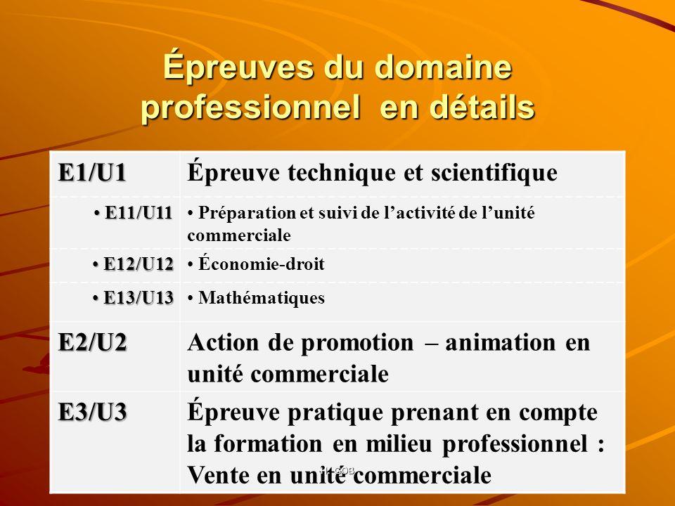 Épreuves du domaine professionnel en détails E1/U1Épreuve technique et scientifique E11/U11 E11/U11 Préparation et suivi de lactivité de lunité commer
