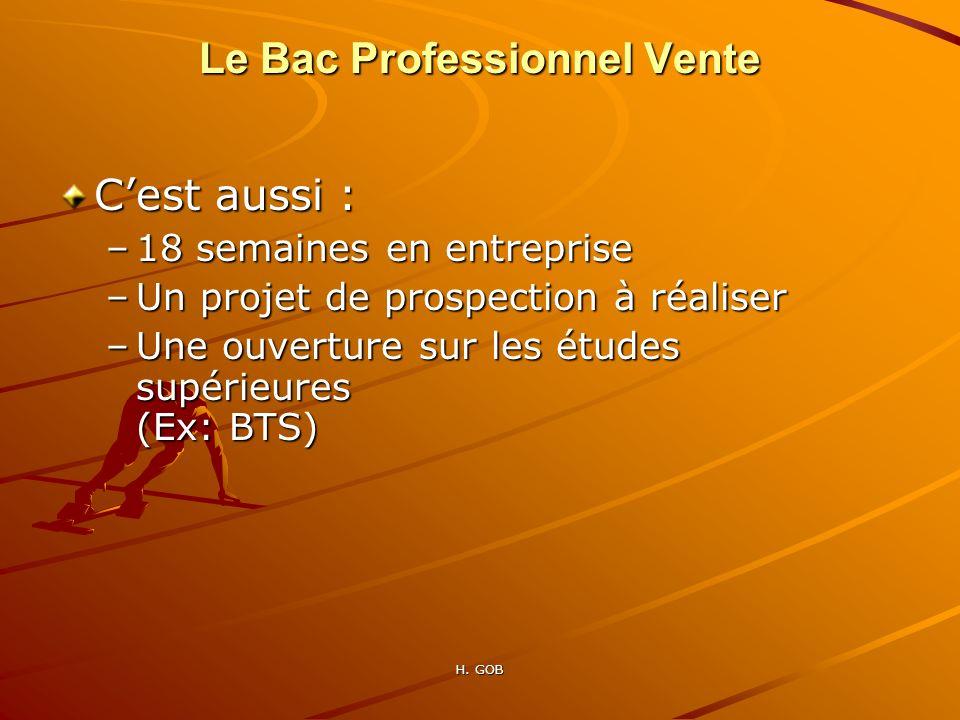 Le Bac Professionnel Vente Cest aussi : –18 semaines en entreprise –Un projet de prospection à réaliser –Une ouverture sur les études supérieures (Ex:
