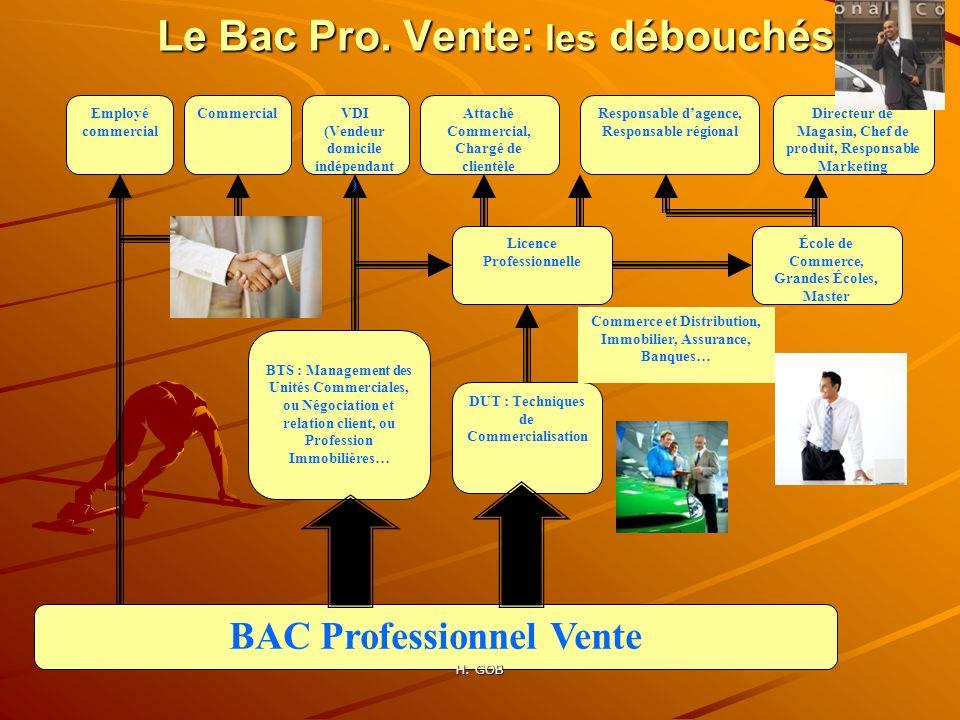 Employé commercial École de Commerce, Grandes Écoles, Master Licence Professionnelle DUT : Techniques de Commercialisation BTS : Management des Unités