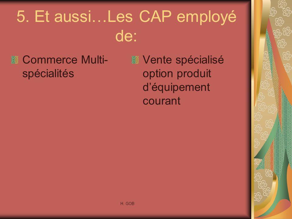 5. Et aussi…Les CAP employé de: Commerce Multi- spécialités Vente spécialisé option produit déquipement courant H. GOB