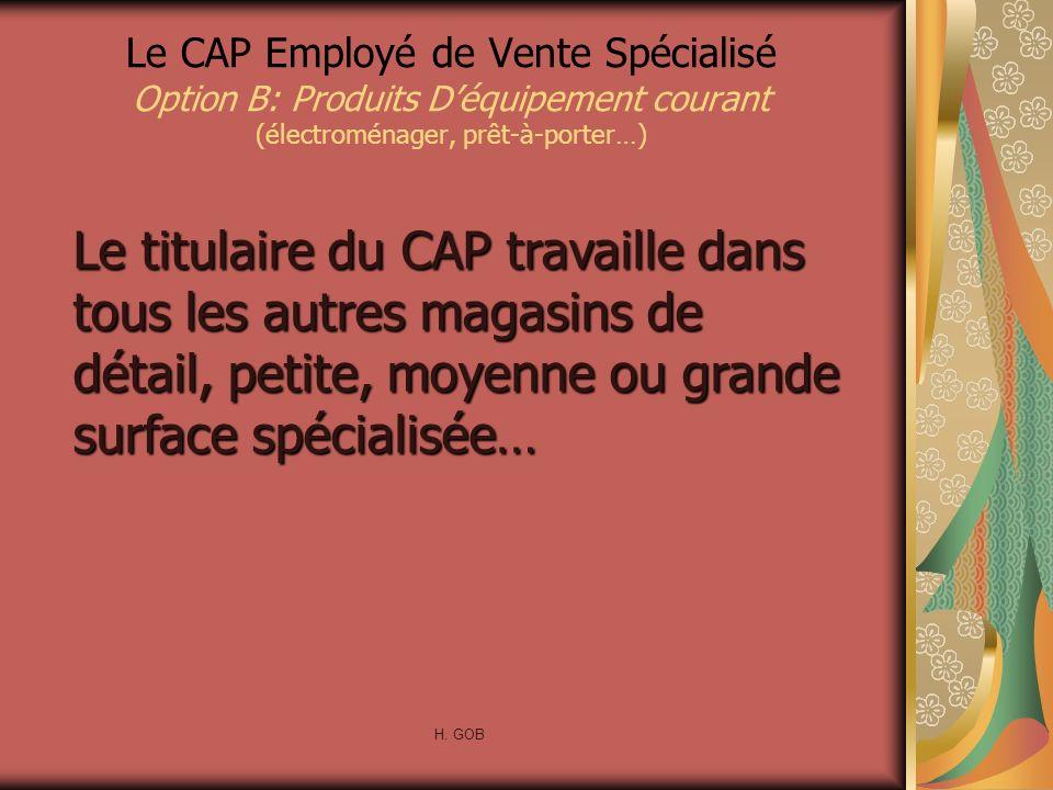 Le CAP Employé de Vente Spécialisé Option B: Produits Déquipement courant (électroménager, prêt-à-porter…) Le titulaire du CAP travaille dans tous les