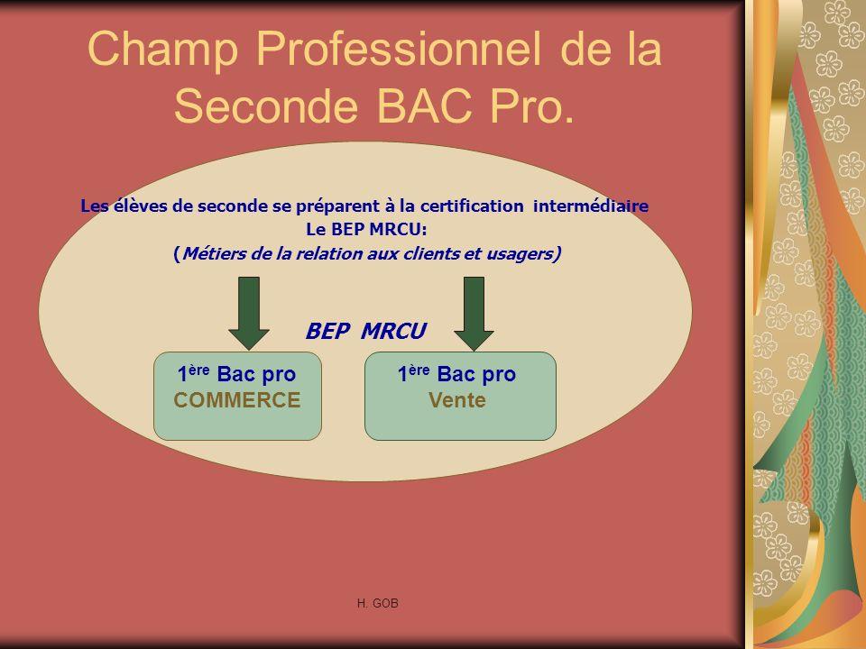 Champ Professionnel de la Seconde BAC Pro. Les élèves de seconde se préparent à la certification intermédiaire Le BEP MRCU: (Métiers de la relation au