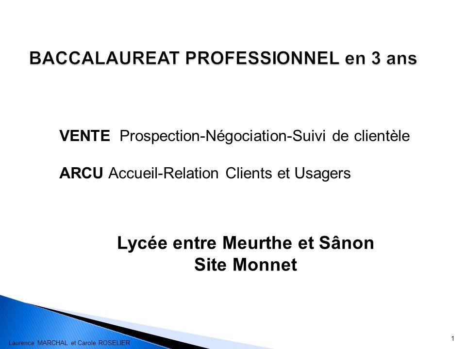 1 Lycée entre Meurthe et Sânon Site Monnet VENTE Prospection-Négociation-Suivi de clientèle ARCU Accueil-Relation Clients et Usagers Laurence MARCHAL et Carole ROSELIER