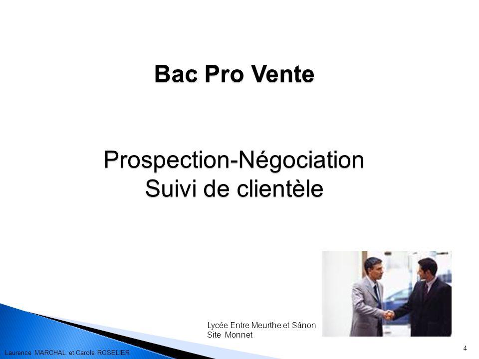 4 Bac Pro Vente Prospection-Négociation Suivi de clientèle Lycée Entre Meurthe et Sânon Site Monnet Laurence MARCHAL et Carole ROSELIER