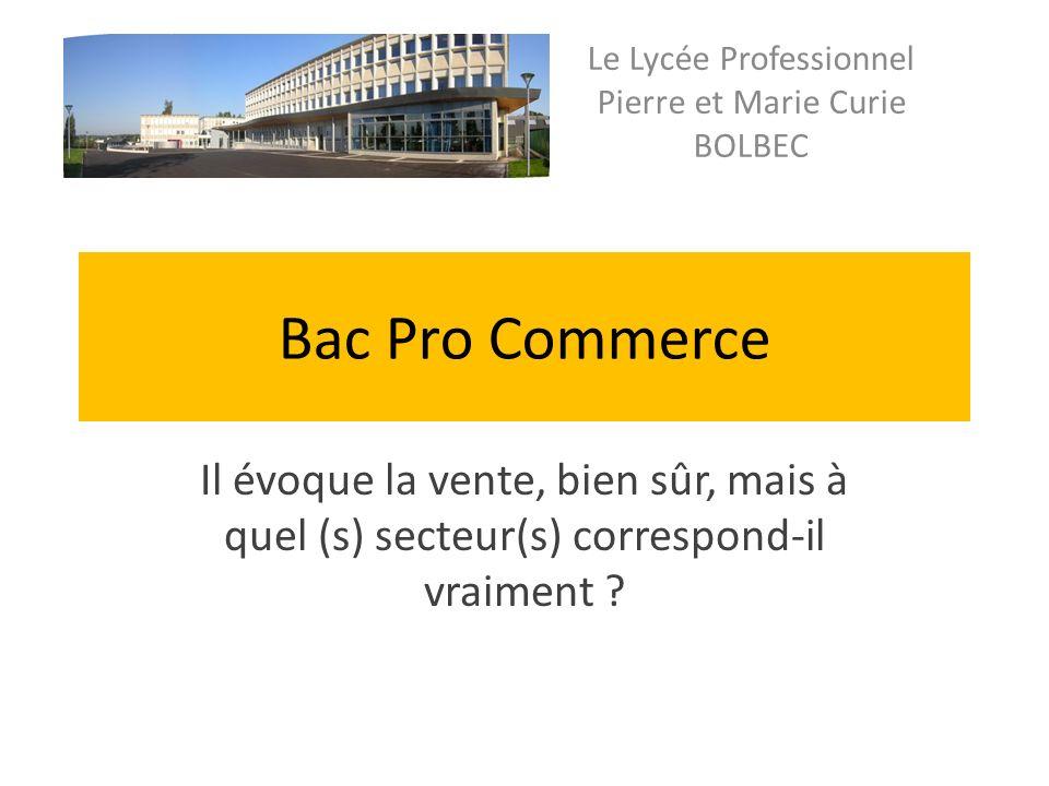 Bac Pro Commerce Il évoque la vente, bien sûr, mais à quel (s) secteur(s) correspond-il vraiment .