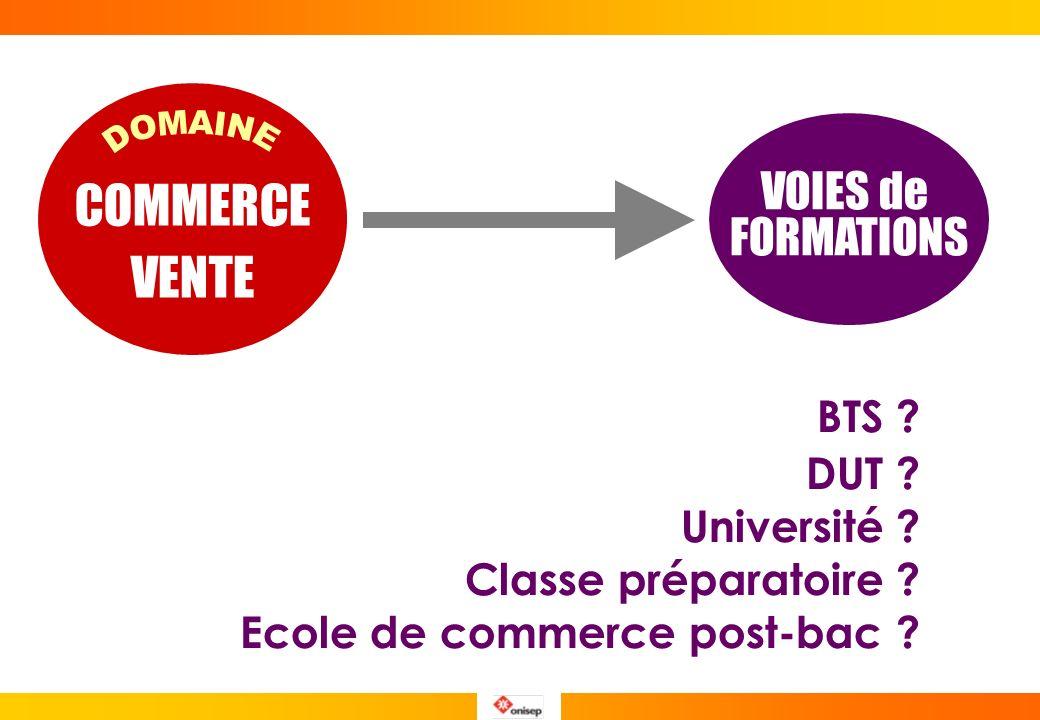 INSTITUTS DADMINISTRATION DES ENTREPRISES I.A.E. CLIQUEZ www.reseau-iae.org