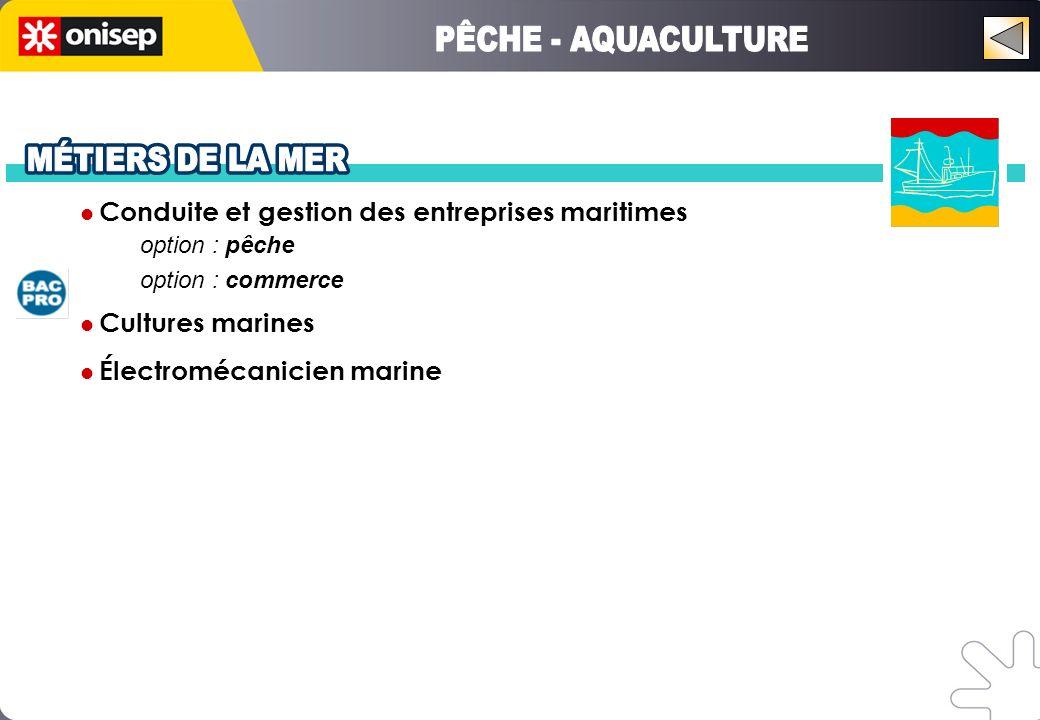 Conduite et gestion des entreprises maritimes option : pêche option : commerce Cultures marines Électromécanicien marine