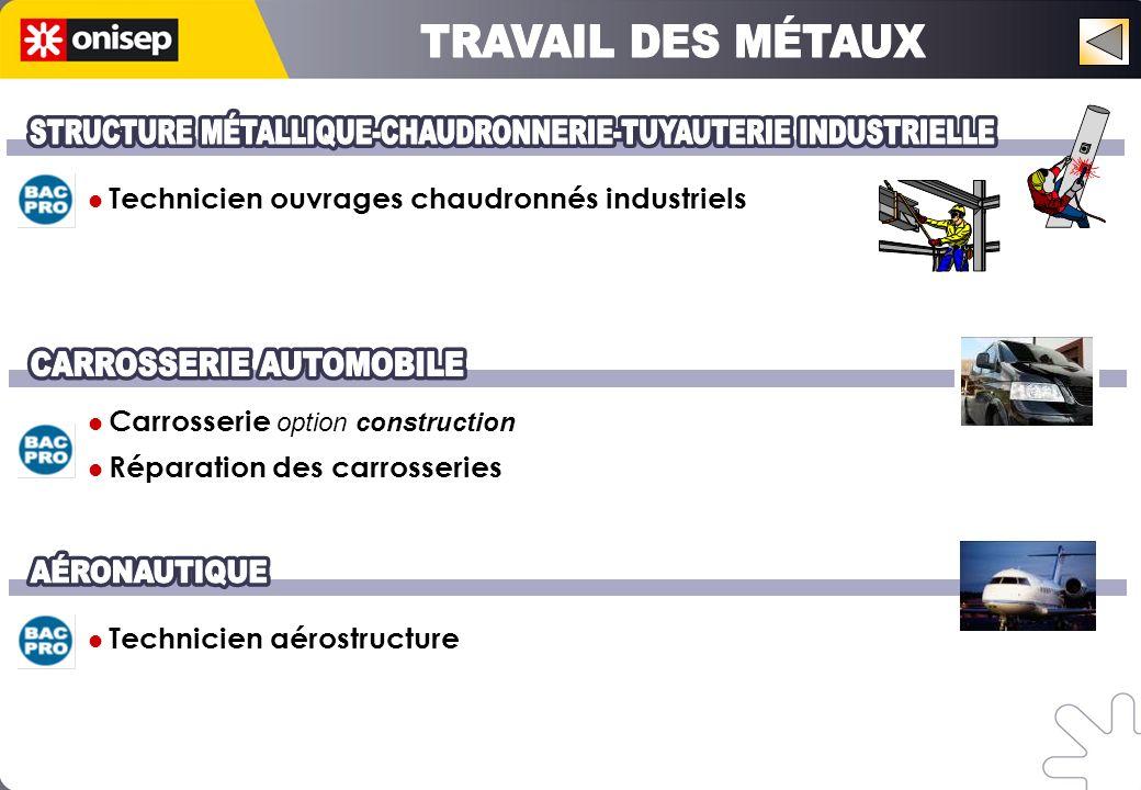 Technicien ouvrages chaudronnés industriels Carrosserie option construction Réparation des carrosseries Technicien aérostructure