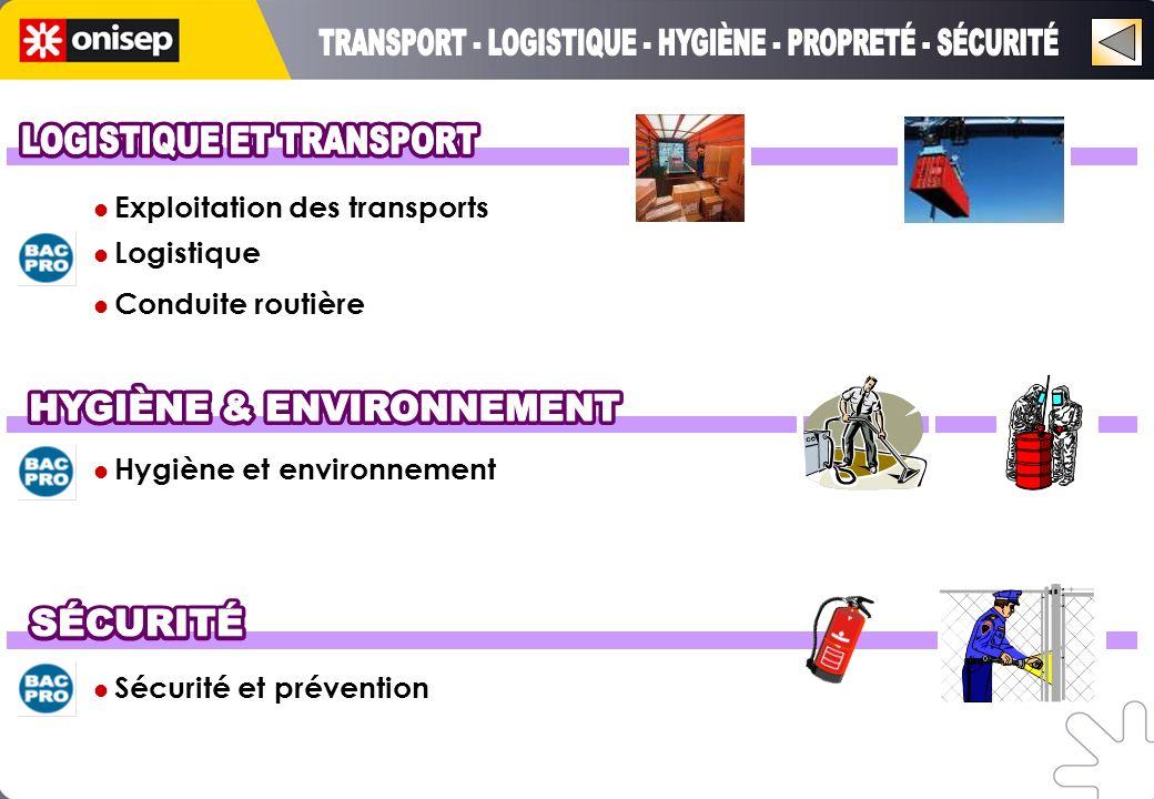 Hygiène et environnement Sécurité et prévention Exploitation des transports Logistique Conduite routière