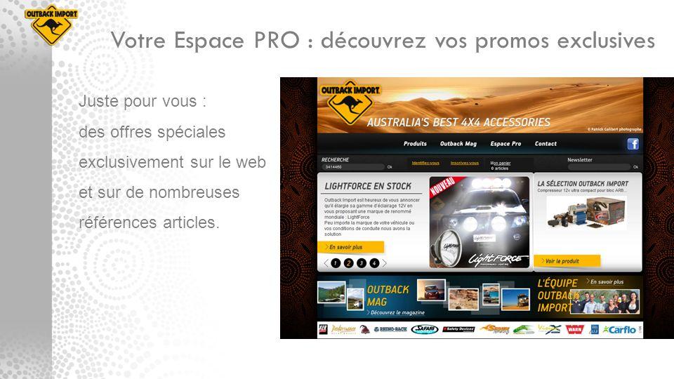 Votre Espace PRO : découvrez vos promos exclusives Juste pour vous : des offres spéciales exclusivement sur le web et sur de nombreuses références art
