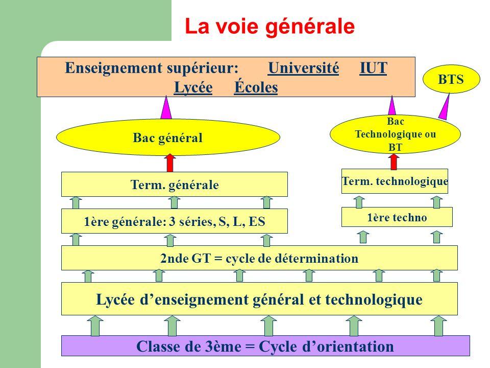 Classe de 3ème = Cycle dorientation Lycée denseignement général et technologique 2nde GT = cycle de détermination 1ère générale: 3 séries, S, L, ES 1ère techno Term.