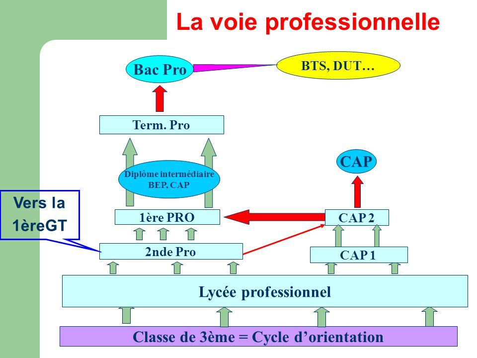 Classe de 3ème = Cycle dorientation Lycée professionnel 2nde Pro CAP 1 1ère PRO CAP 2 CAP Term. Pro Bac Pro Diplôme intermédiaire BEP, CAP La voie pro