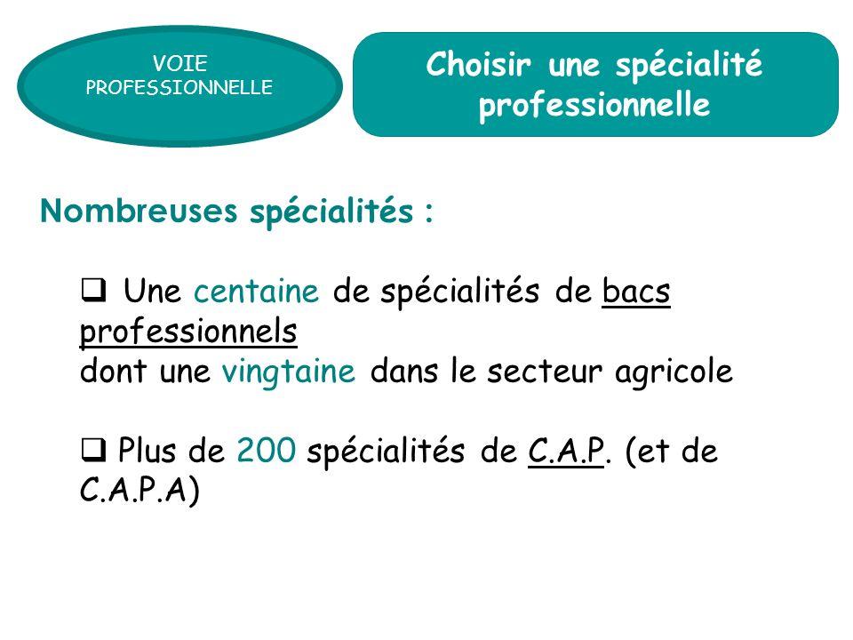 Une centaine de spécialités de bacs professionnels dont une vingtaine dans le secteur agricole Plus de 200 spécialités de C.A.P.