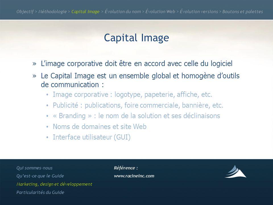 Objectif > Méthodologie > Capital Image > Évolution du nom > Évolution Web > Évolution versions > Boutons et palettes Capital Image »Limage corporativ