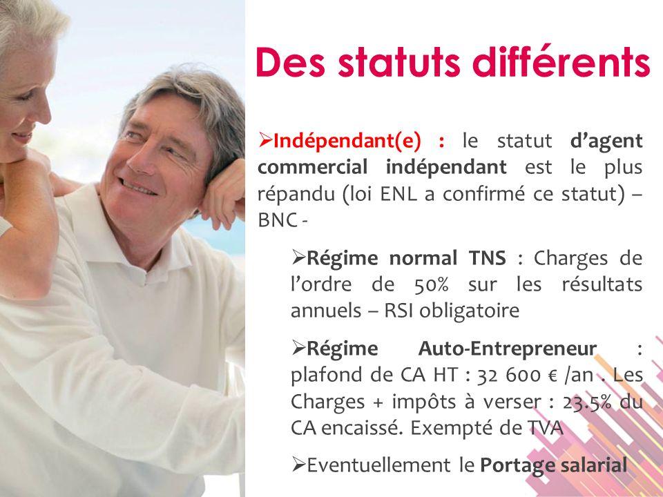 Indépendant(e) : le statut dagent commercial indépendant est le plus répandu (loi ENL a confirmé ce statut) – BNC - Régime normal TNS : Charges de lor