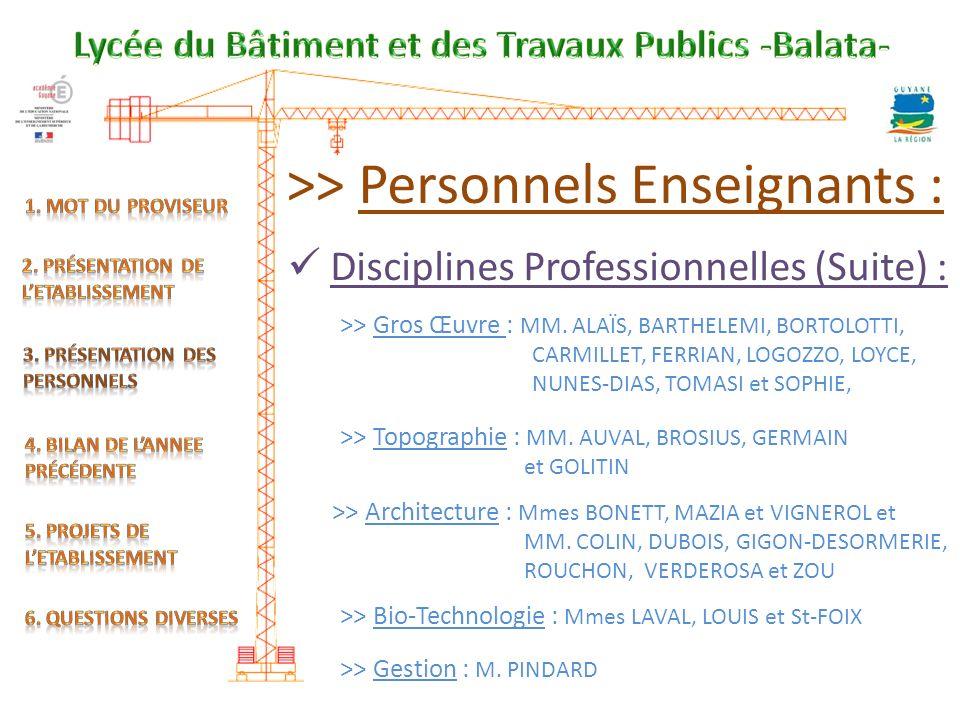 >> Personnels Enseignants : Disciplines Professionnelles (Suite) : >> Gros Œuvre : MM.
