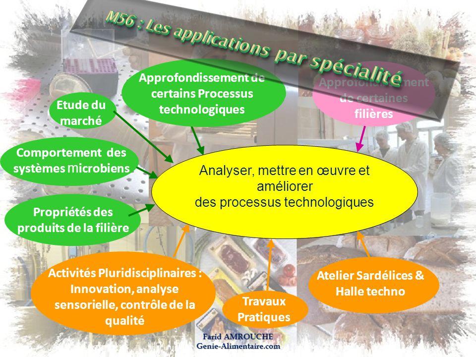 Farid AMROUCHE Genie-Alimentaire.com Approfondissement de certaines filières Approfondissement de certains Processus technologiques Etude du marché Co