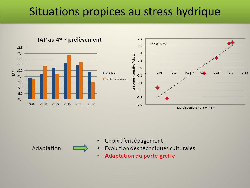Situations propices au stress hydrique Choix dencépagement Evolution des techniques culturales Adaptation du porte-greffe Adaptation