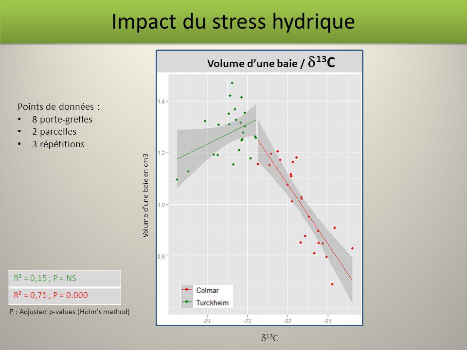 Volume dune baie / 13 C R² = 0,15 ; P = NS R² = 0,71 ; P = 0.000 P : Adjusted p-values (Holm's method) Impact du stress hydrique Volume dune baie en c