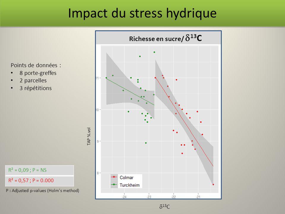 Richesse en sucre/ 13 C R² = 0,09 ; P = NS R² = 0,57 ; P = 0.000 P : Adjusted p-values (Holm's method) Impact du stress hydrique TAP %.vol 13 C Points