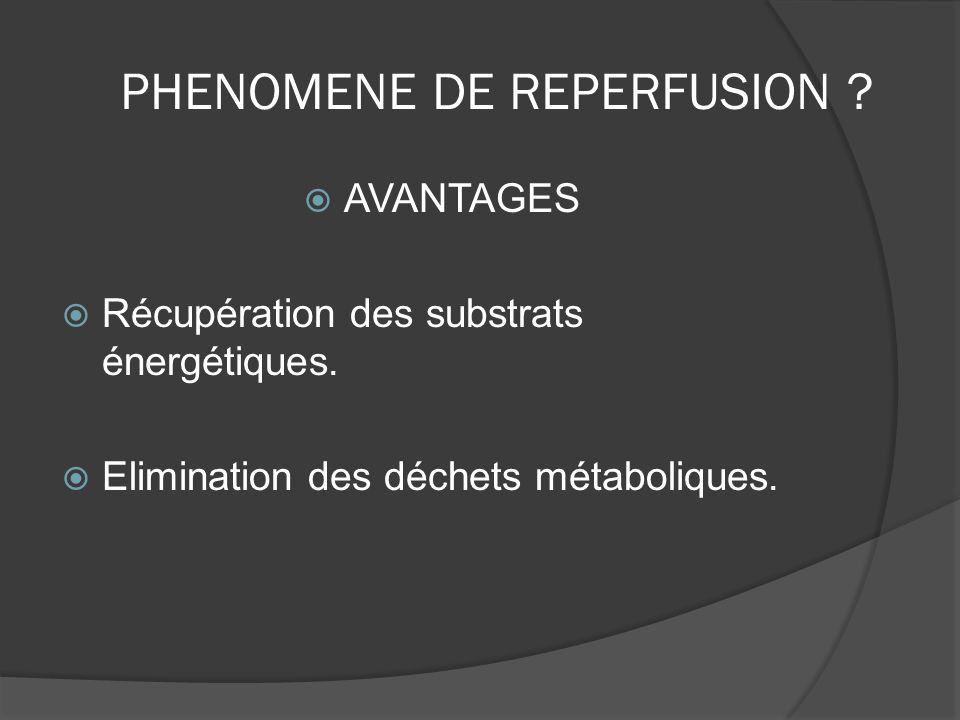 PHENOMENE DE REPERFUSION ? AVANTAGES Récupération des substrats énergétiques. Elimination des déchets métaboliques.