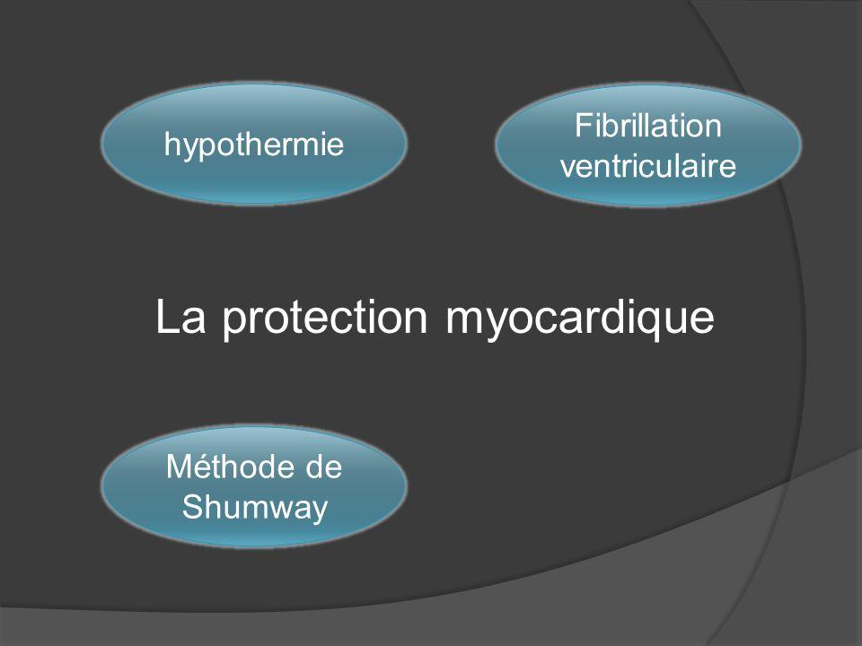 La protection myocardique hypothermie Fibrillation ventriculaire Méthode de Shumway