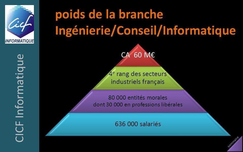 sommaire poids de la branche Ingénierie/Conseil/Informatique CICF Informatique CA 60 M 4 e rang des secteurs industriels français 80 000 entités moral