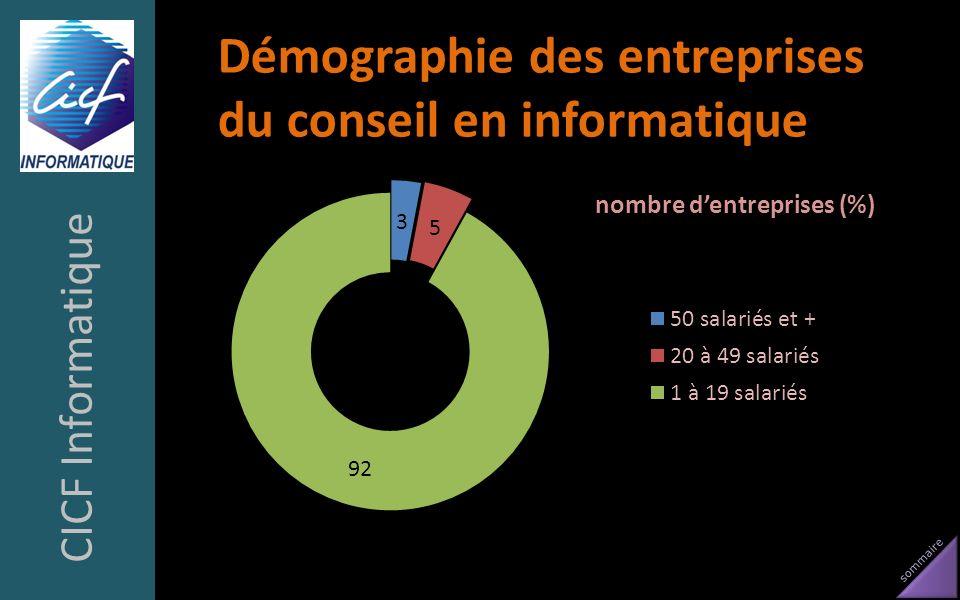 sommaire Démographie des entreprises du conseil en informatique CICF Informatique