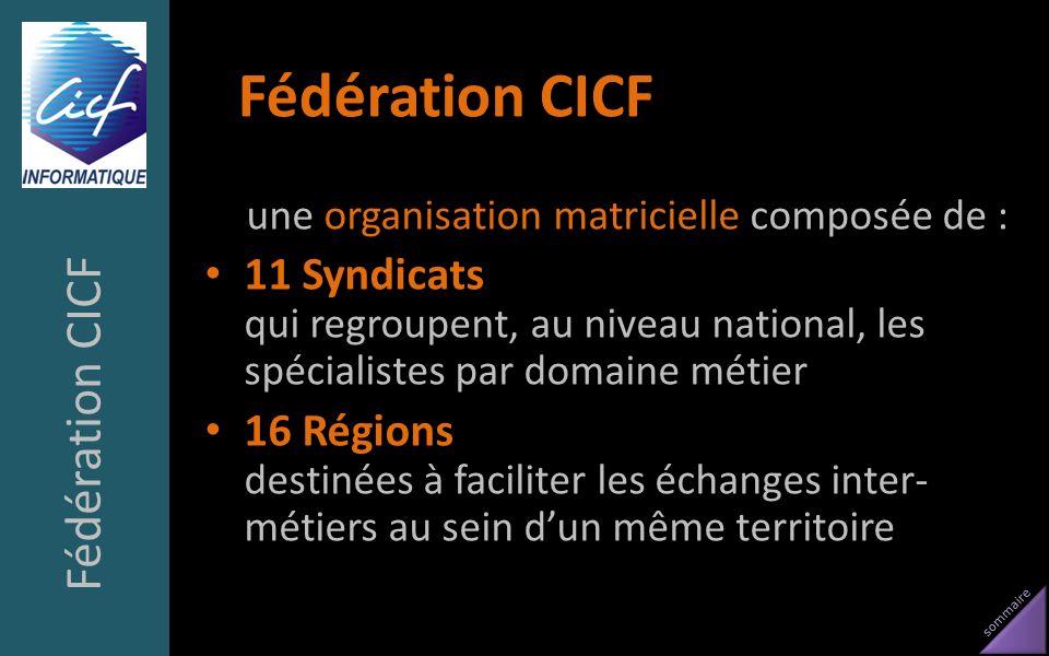 sommaire Fédération CICF une organisation matricielle composée de : 11 Syndicats qui regroupent, au niveau national, les spécialistes par domaine méti
