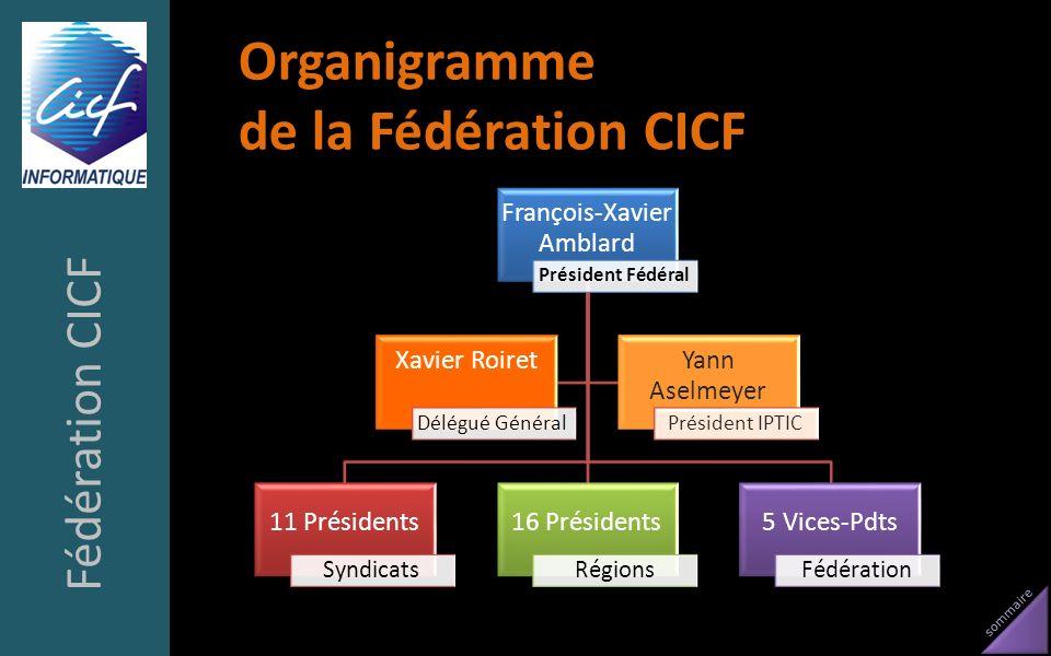 sommaire Organigramme de la Fédération CICF Fédération CICF François-Xavier Amblard Président Fédéral 11 Présidents Syndicats 16 Présidents Régions 5