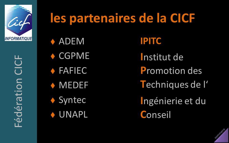 sommaire les partenaires de la CICF ADEM CGPME FAFIEC MEDEF Syntec UNAPL IPITC I nstitut de P romotion des T echniques de l I ngénierie et du C onseil