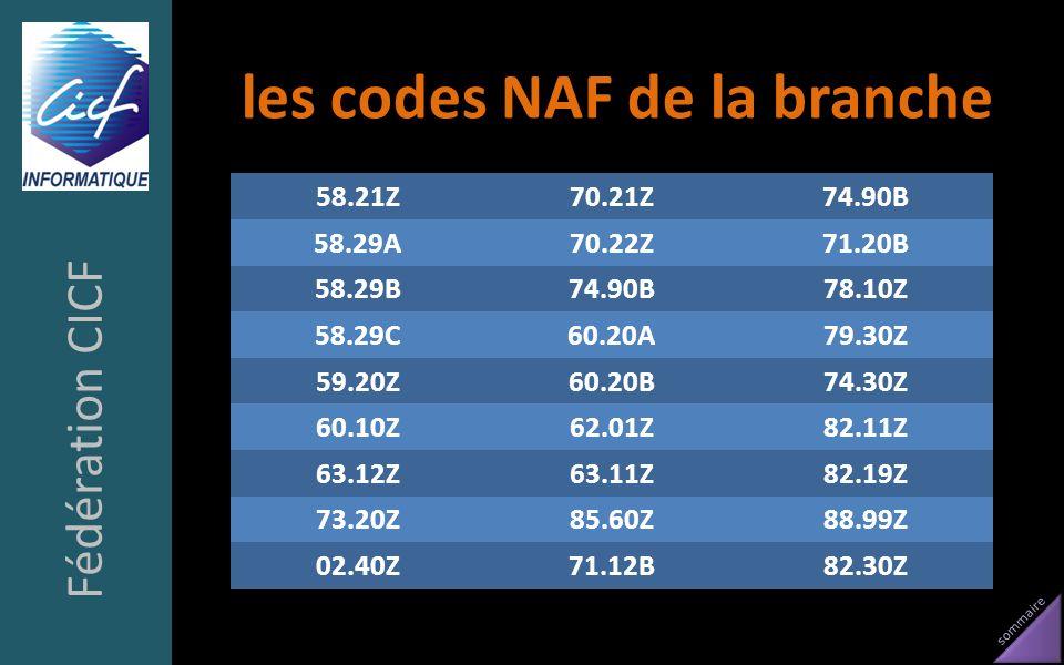 sommaire les codes NAF de la branche 58.21Z70.21Z74.90B 58.29A70.22Z71.20B 58.29B74.90B78.10Z 58.29C60.20A79.30Z 59.20Z60.20B74.30Z 60.10Z62.01Z82.11Z