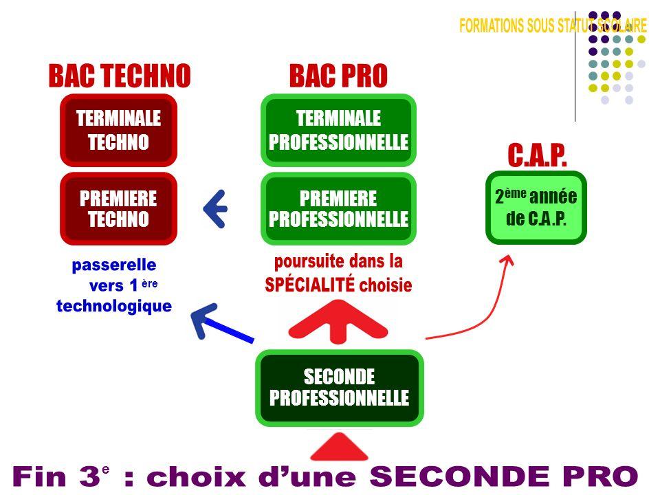 BAC PRO SECONDE PROFESSIONNELLE PREMIERE PROFESSIONNELLE TERMINALE PROFESSIONNELLE e BAC TECHNO PREMIERE TECHNO TERMINALE TECHNO ère C.A.P. 2 ème anné