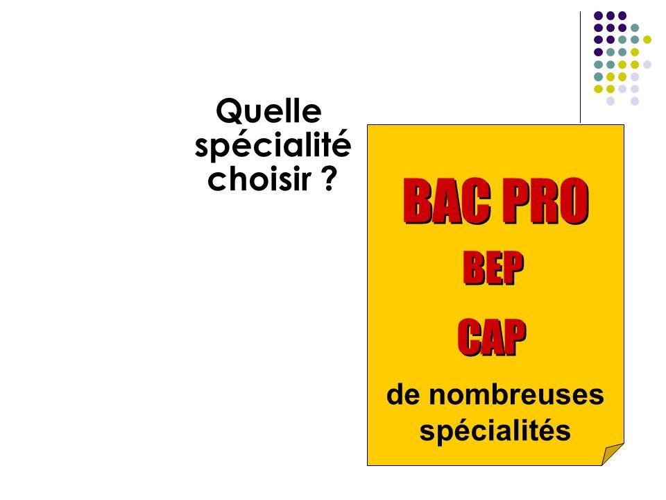 de nombreuses spécialités Quelle spécialité choisir ? BAC PRO BEP CAP BAC PRO BEP CAP