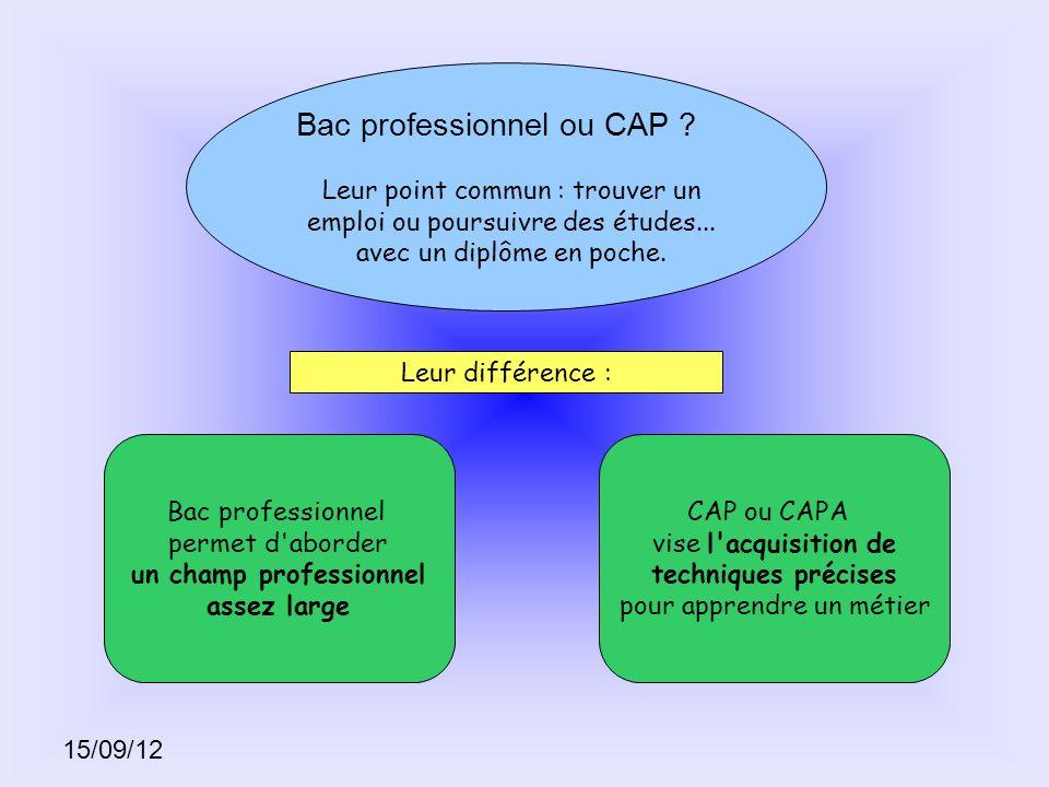 15/09/12 Bac professionnel ou CAP ? Leur point commun : trouver un emploi ou poursuivre des études... avec un diplôme en poche. Leur différence : Bac