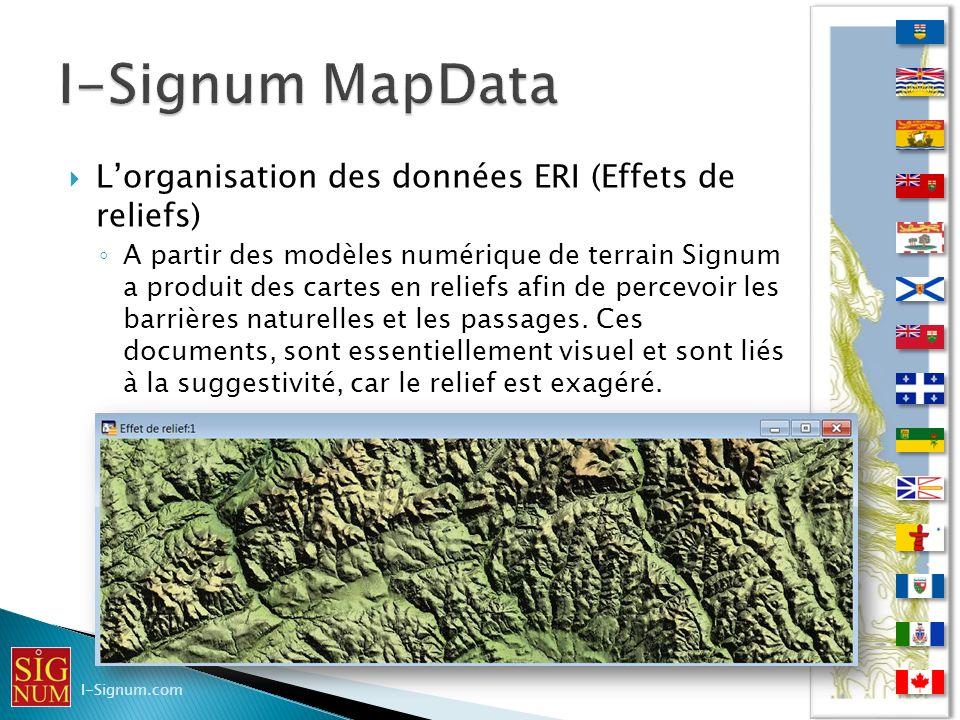 Lorganisation des données ERI (Effets de reliefs) Lorganisation des données ERI (Effets de reliefs) A partir des modèles numérique de terrain Signum a