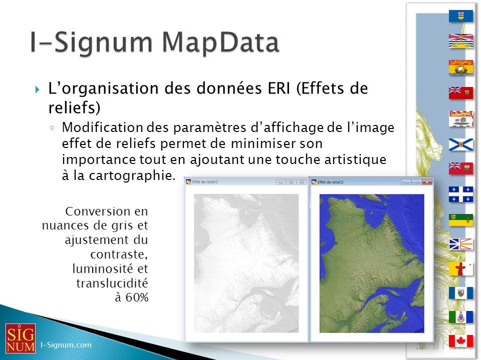 Lorganisation des données ERI (Effets de reliefs) Lorganisation des données ERI (Effets de reliefs) Modification des paramètres daffichage de limage e