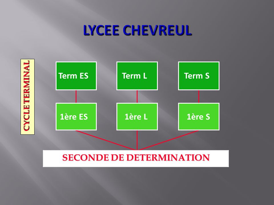 Term ESTerm LTerm S 1ère ES1ère S 1ère L CYCLE TERMINAL SECONDE DE DETERMINATION SECONDE DE DETERMINATION