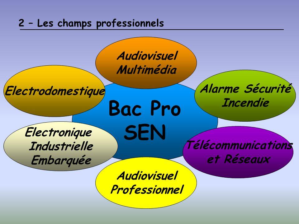 2 – Les champs professionnels Bac Pro SEN Audiovisuel Multimédia Alarme Sécurité Incendie Electrodomestique Télécommunications et Réseaux Electronique