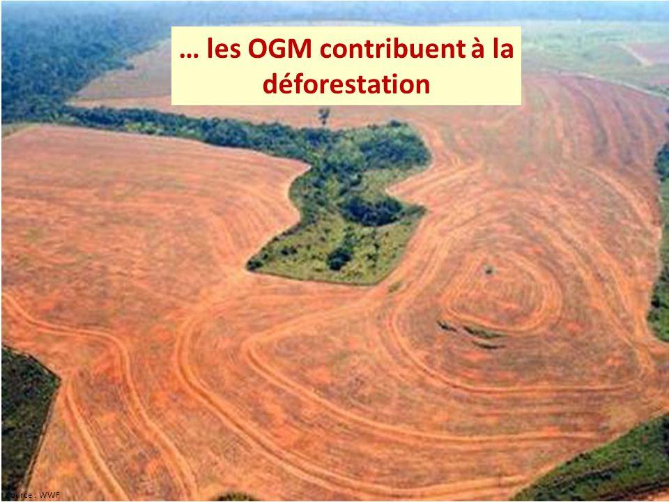 … les OGM contribuent à la déforestation Source : WWF