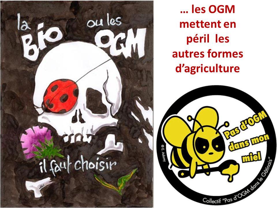 … les OGM mettent en péril les autres formes dagriculture