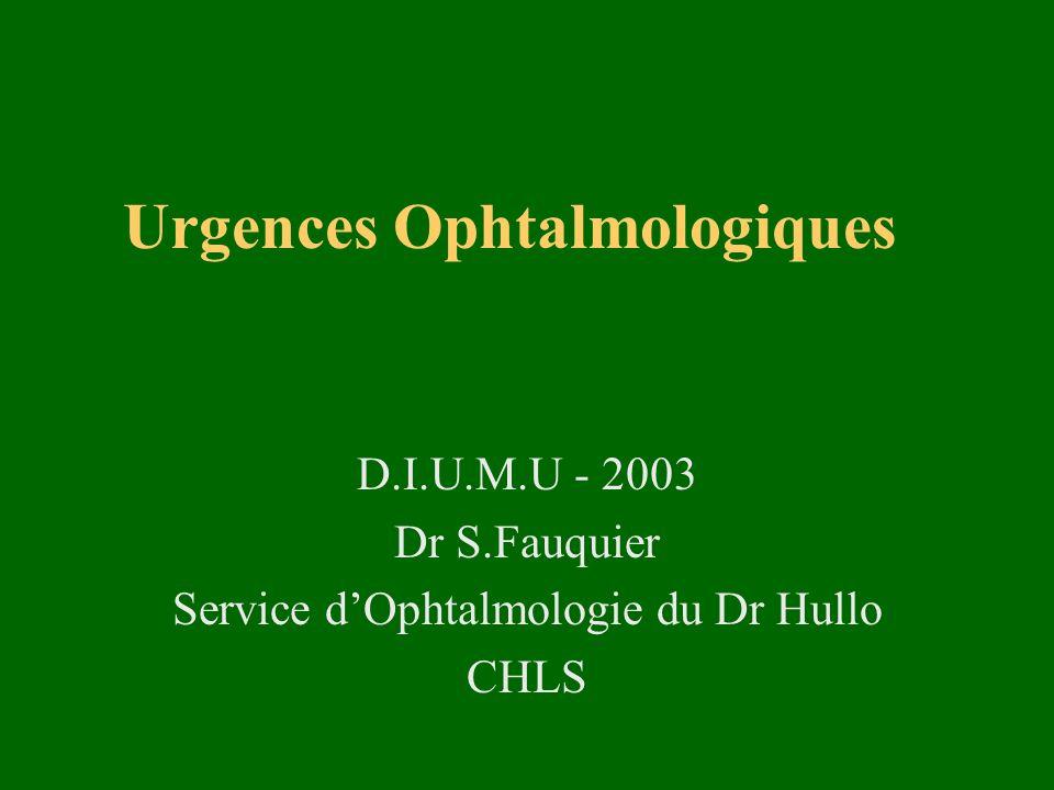 Urgences Ophtalmologiques D.I.U.M.U - 2003 Dr S.Fauquier Service dOphtalmologie du Dr Hullo CHLS
