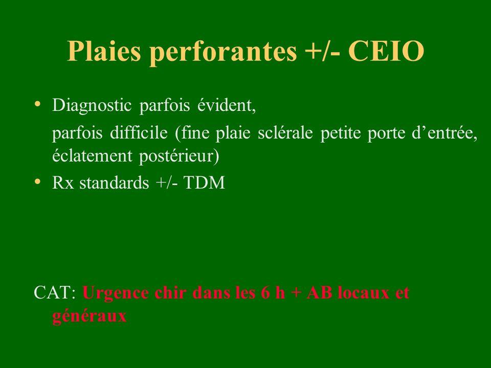 Plaies perforantes +/- CEIO Diagnostic parfois évident, parfois difficile (fine plaie sclérale petite porte dentrée, éclatement postérieur) Rx standar