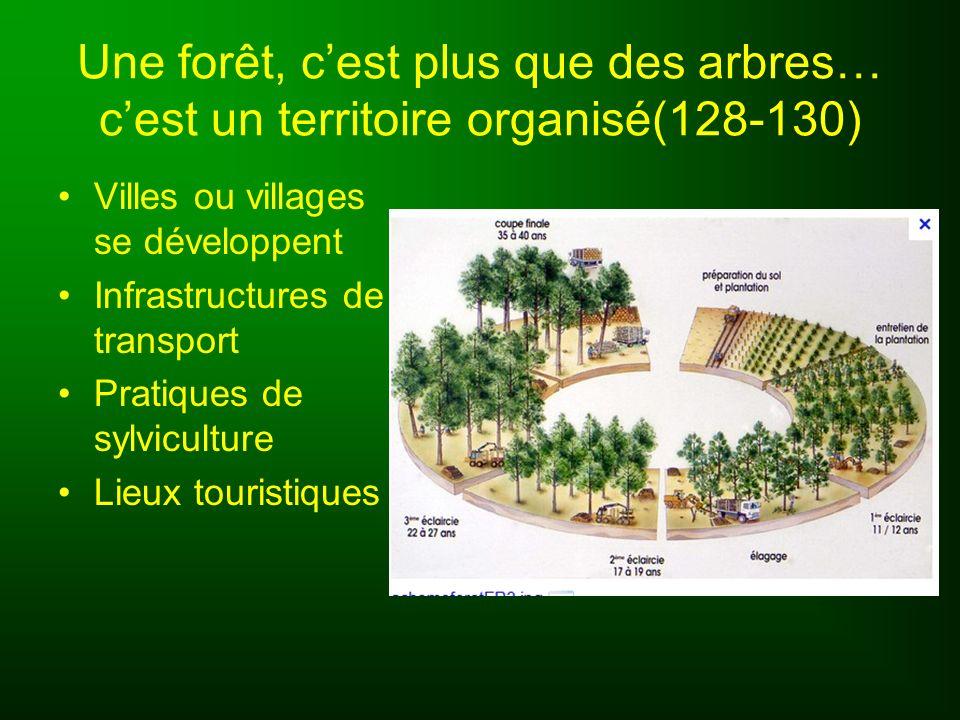 Une forêt, cest plus que des arbres… cest un territoire organisé(128-130) Villes ou villages se développent Infrastructures de transport Pratiques de